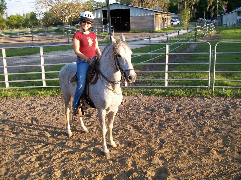 Troton Galopero (colombian gaited horse)